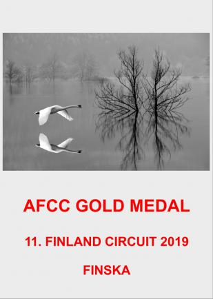 AFCC GOLD 2AA