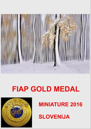 FIAP GOLD MINIATURE 16DD