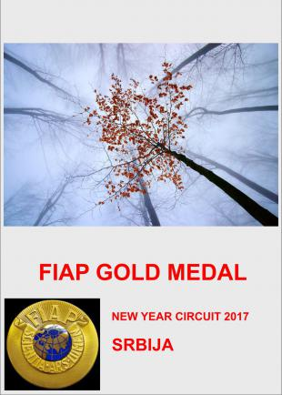 FIAP GOLD NEW YEAR 17AA