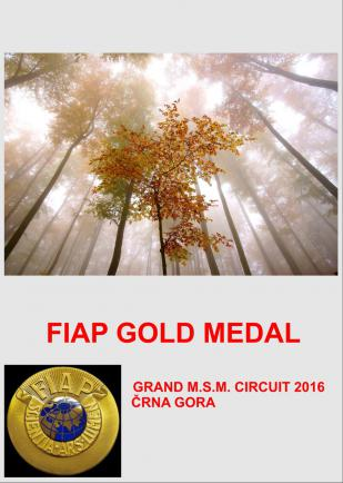 FIAP GOLD WOOD W 100DD