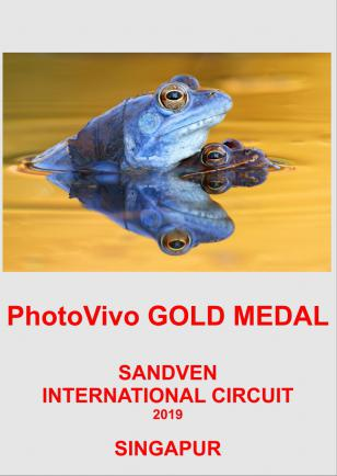 PHOTOVIVO GOLD-LOVE-POMANJSANA SLIKA