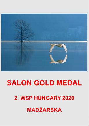 SALON GOLD MADZARSKAAA