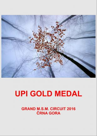 UPI GOLD UP 1000DD