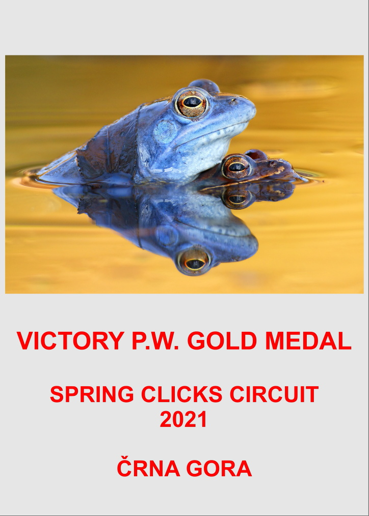 VICTORY GOLD SPRING CLICKS 21-AA